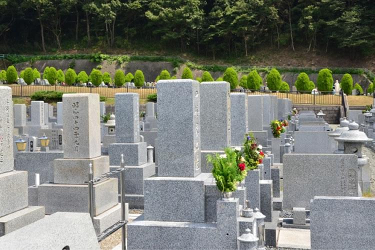 墓活(ぼかつ)