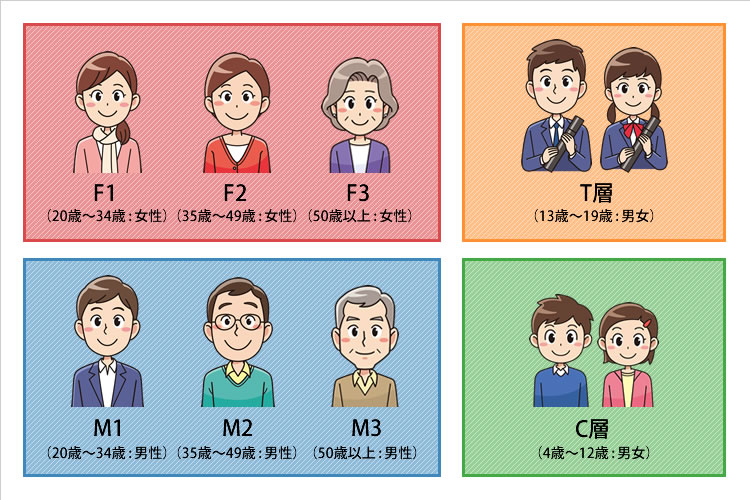 M1層、M2層、M3層、F1層、F2層、F3層、C層、T層の意味と特徴