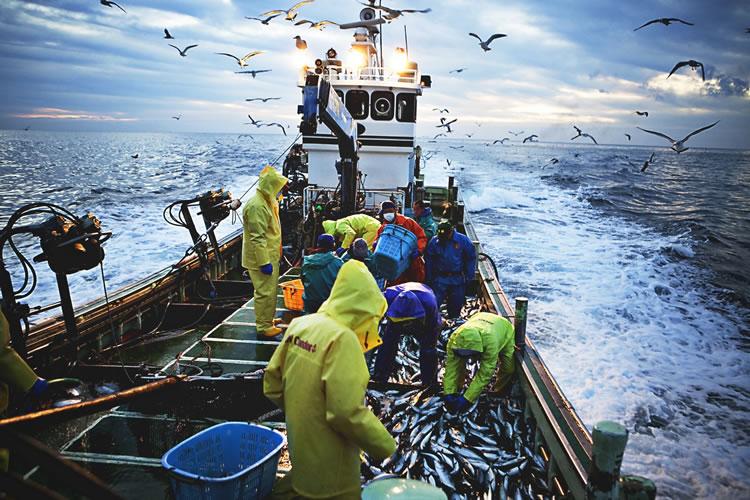 水産業・漁業