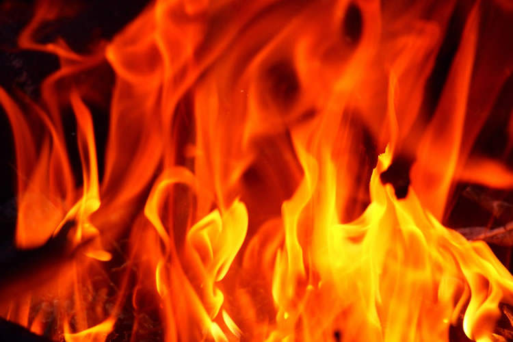 彼岸花を家に持ち帰ると火事になる