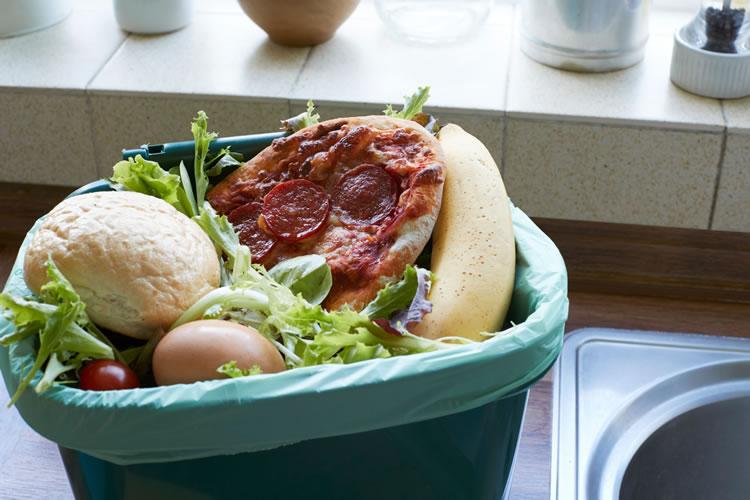 「食料廃棄」「食品ロス(フードロス)」の意味と違い