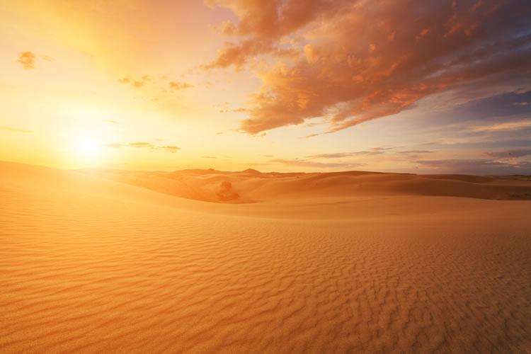 砂漠化・干ばつ