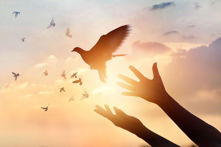 平和の実現