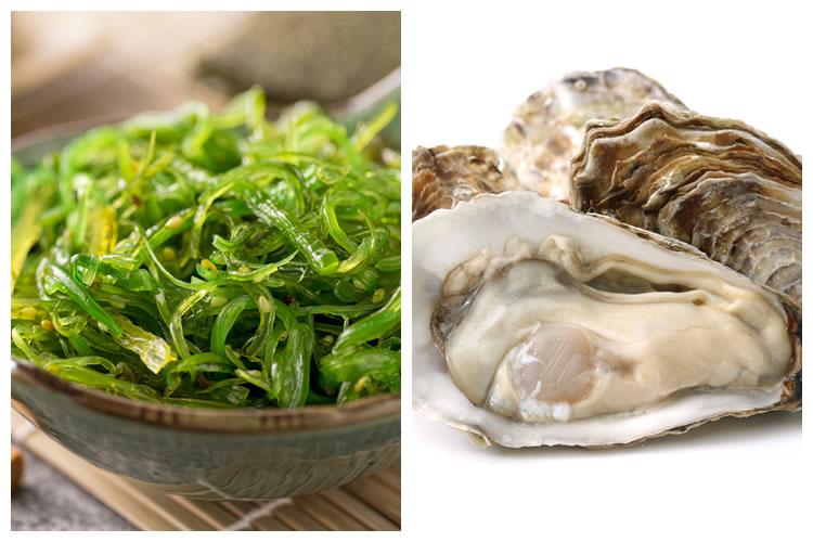 海藻+牡蠣