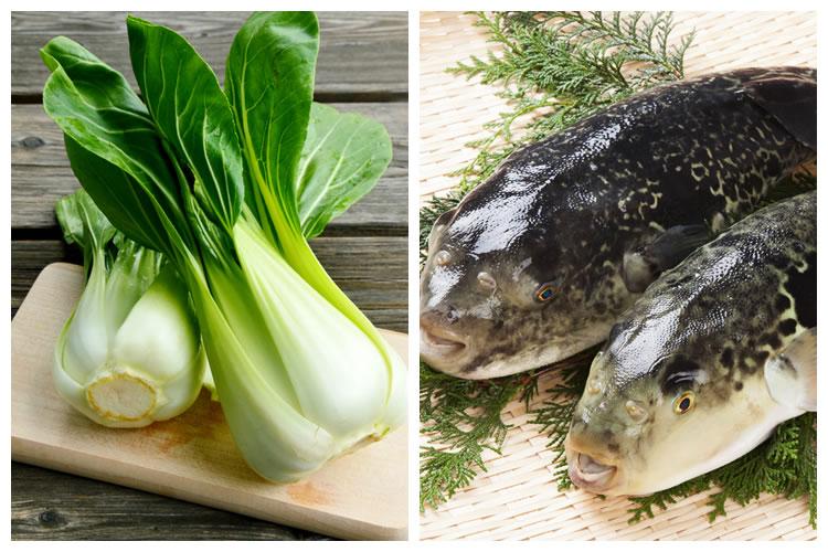 青菜+ふぐ