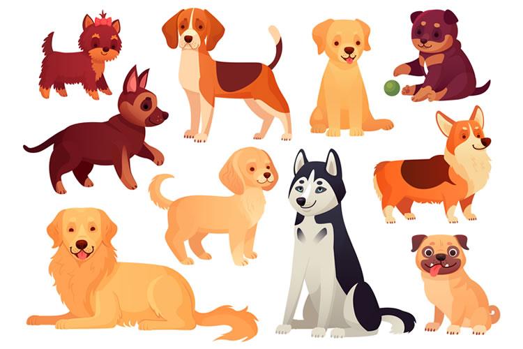 「犬」「狗」「戌」の意味と違い