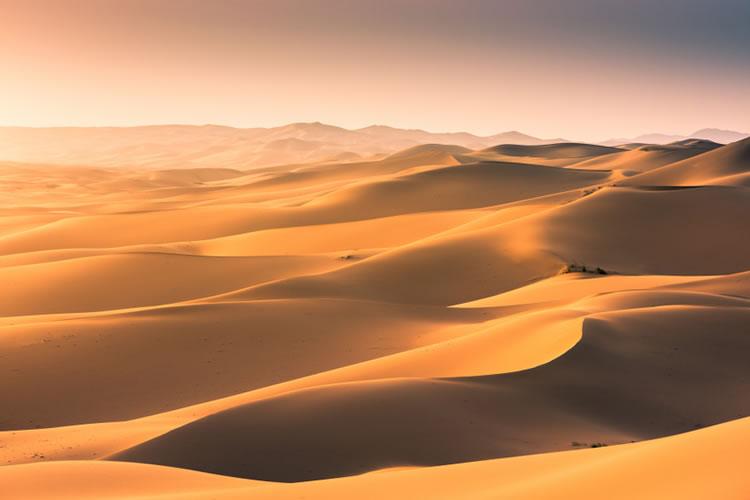 「砂丘」「砂漠」の意味と違い