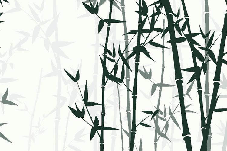 「竹」「笹」の意味と違い