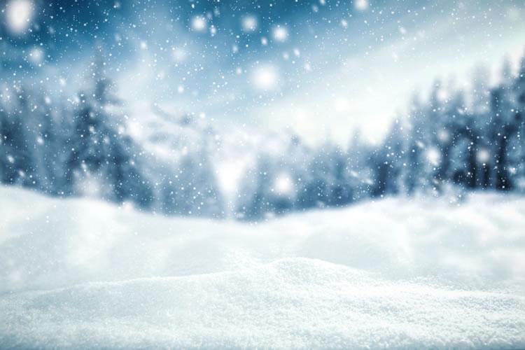 「降雪」「積雪」「着雪」の意味と違い